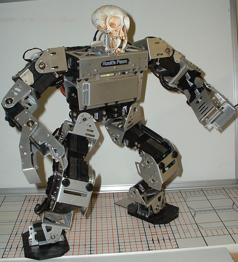 Home robotic projects